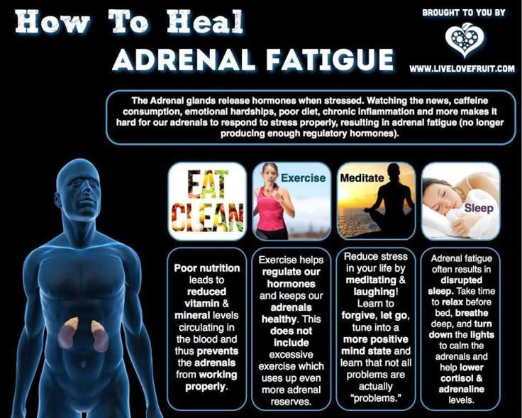 adrenal-fatigue
